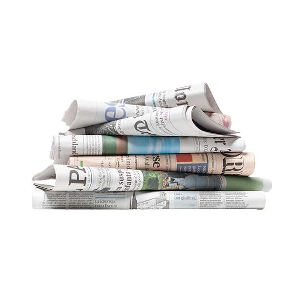 Ahold Newspapers Delivery or Pickup