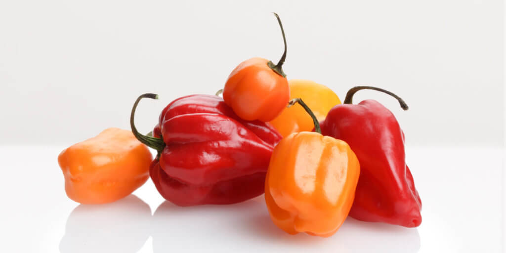 Habanero Peppers – All You Need to Know | Instacart Guide to Fresh Produce