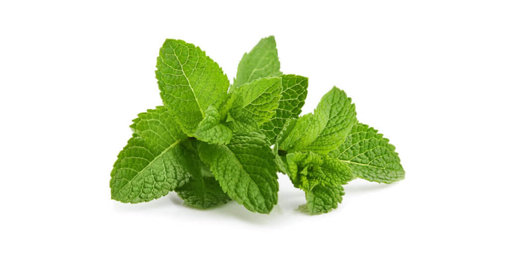 Peppermint – All You Need to Know   Instacart Guide to Fresh Produce