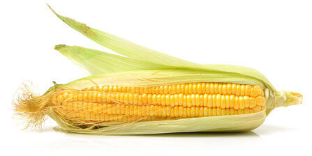 Sweet Corn – All You Need to Know   Instacart Guide to Fresh Produce